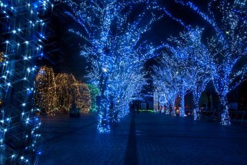 青色LED