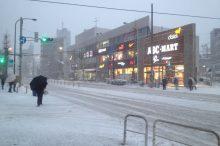 2014年2月8日、東京大雪