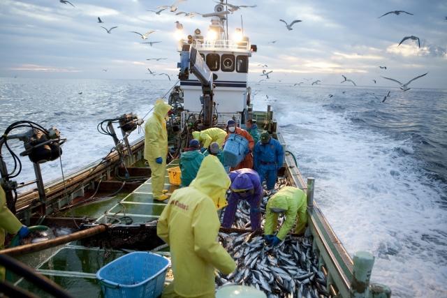 漁船、漁師